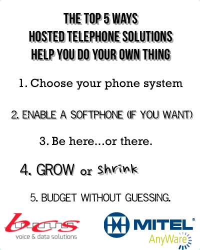 hosted telephone solutions